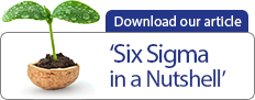 Download Our Article - Six Sigma in a Nutshell